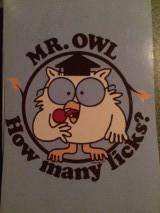 owlicks